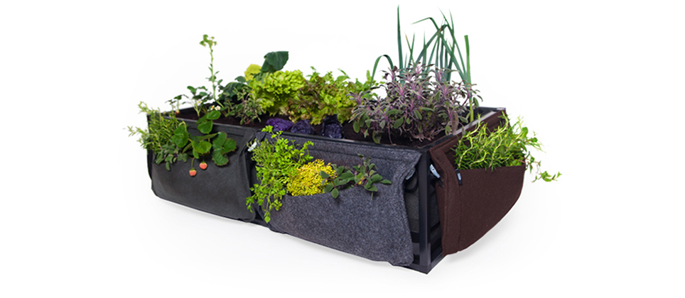 A horta inteligente que só precisa ser regada a cada 15 dias
