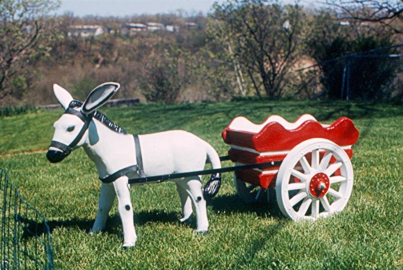 Israel é 1º país a proibir carroças puxadas por animais