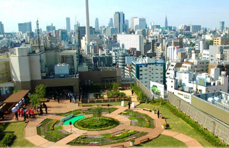 Tóquio mantém hortas nas estações de metrô para população poder cultivar orgânicos