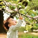 12 cidades que plantam uma árvore a cada bebê nascido