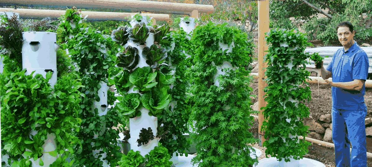 A tecnologia que economiza água e espaço para plantar hortas na cidade. Veja como!