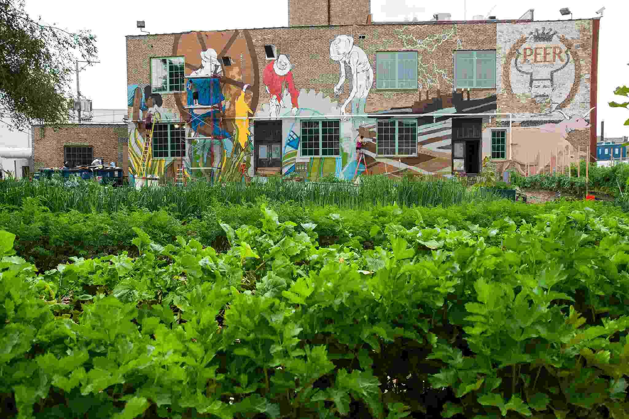 A fazenda urbana vertical que usa restos de alimentos descartados pela população para gerar energia