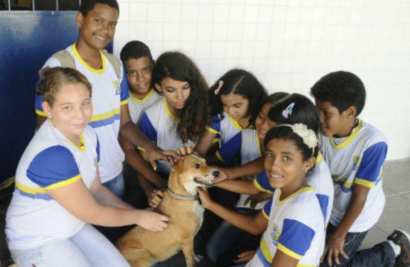Escola de PE inclui 'respeito aos animais' no currículo e adota cães para dar exemplo