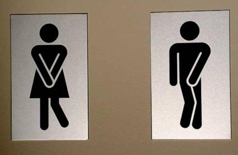 Brasileiro cria banheiro seco portátil que pode substituir banheiros químicos