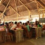Conheça a escola que fica no meio da floresta, é feita de bambu e ensina permacultura aos alunos