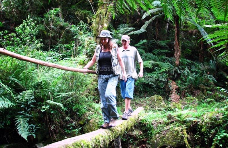 Guia GRATUITO ensina como sinalizar trilhas para ecoturismo