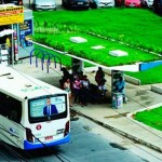 Salvador instala 1º ponto de ônibus com teto verde (e temperatura no local cai mais de 5ºC)