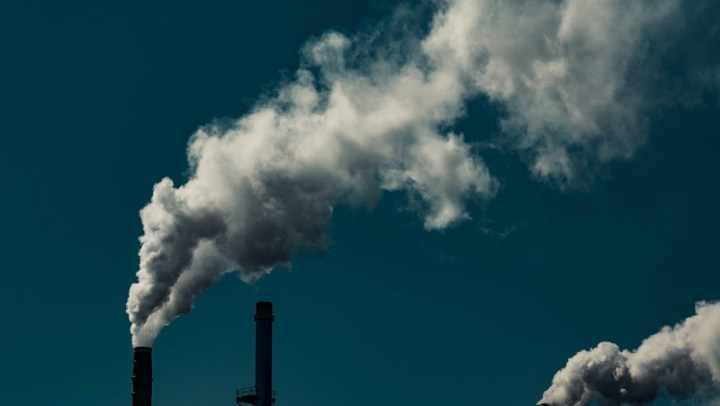 Alimentação pode reduzir sua pegada de carbono pela metade. Saiba como!