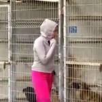 A mulher que comprou um abrigo inteiro de cães, porque não sabia qual adotar