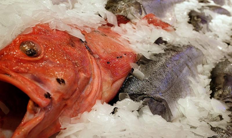 Taxa perigosa de mercúrio é encontrada em 30% das mulheres que consomem peixe