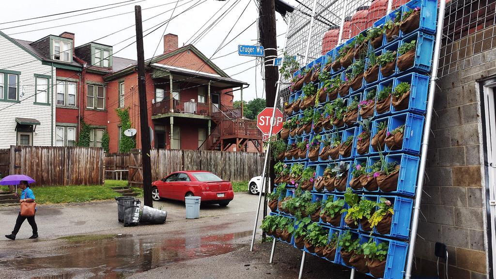 Filadélfia quer transformar todos os prédios abandonados da cidade em fazendas verticais