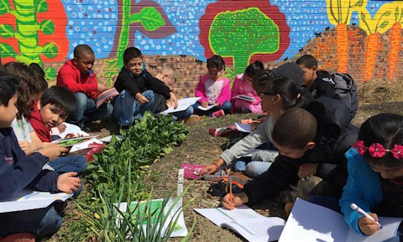 Educadora usa horta como método de ensino (e ganha atenção dos alunos mais difíceis da escola)