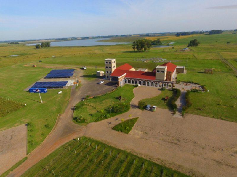 Brasil constrói primeira vinícola da América Latina movida 100% a energia solar