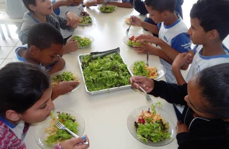 Escolas públicas do RJ tiram alimentos processados da merenda e substituem por orgânicos