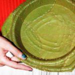 Conheça os pratos biodegradáveis (em formato de folha) que se decompõem em 28 dias