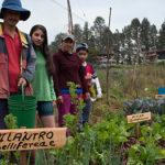 Eles produzem comida e passam fome! 28% da população rural da América Latina vive em situação de pobreza extrema