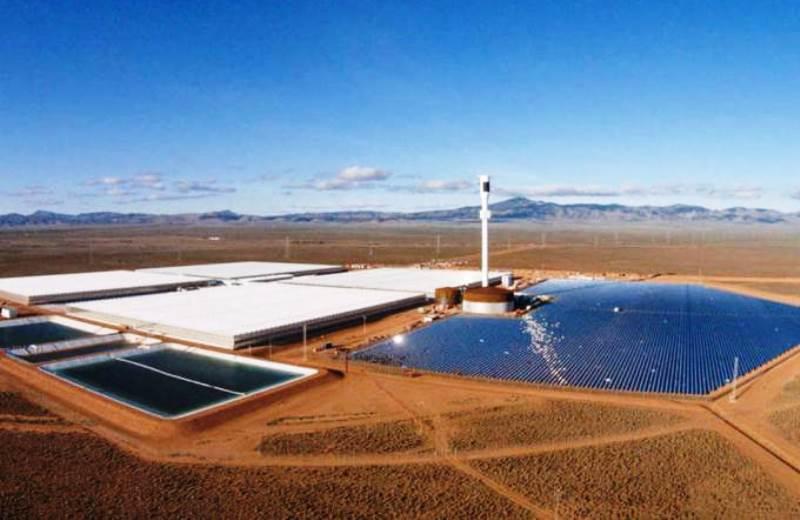 A fazenda que fica no meio do deserto e cultiva orgânicos usando água do mar