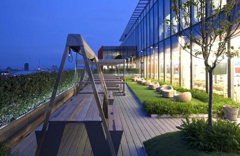 Sede da Google em Londres tem lotes para funcionários cultivarem orgânicos