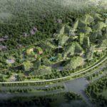 China promete ter cidade inteira coberta por árvores até 2020