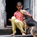 Índia institui 'Compaixão pelos Animais' como matéria escolar em milhares de colégios públicos e privados