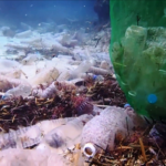 """Mergulhadores flagram fundo do mar de ilha """"preservada"""" da Ásia repleto de garrafas plásticas"""