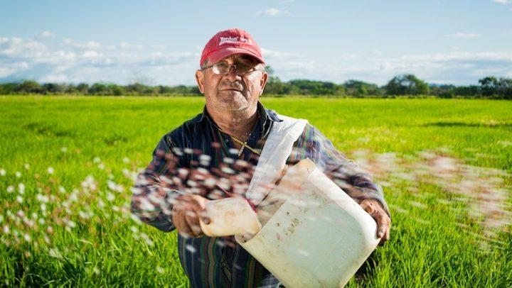 Fazendeiros investem em agricultura orgânica após adoecerem com uso de agrotóxicos