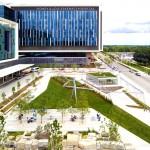 Hospital dos EUA tem horta que oferece alimentos aos pacientes