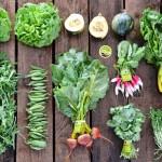 Aprenda como fazer uma horta em casa em 10 lições