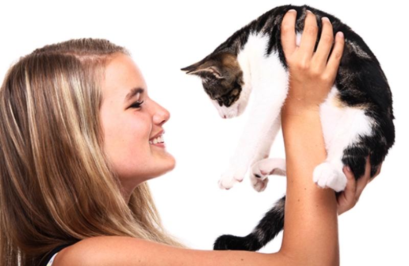 Rede de pet shops do Canadá deixa de vender filhotes e passa a promover adoção