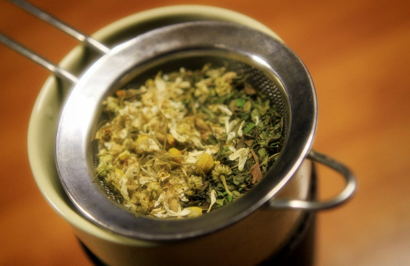 5 ervas medicinais para não tomar remédio toda hora