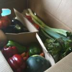Maior rede de supermercados inglesa decide doar comidas excedentes para quem tem fome