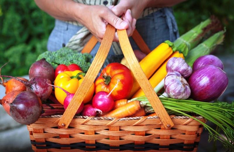 Um terço dos alimentos consumidos no Brasil está contaminado por agrotóxicos