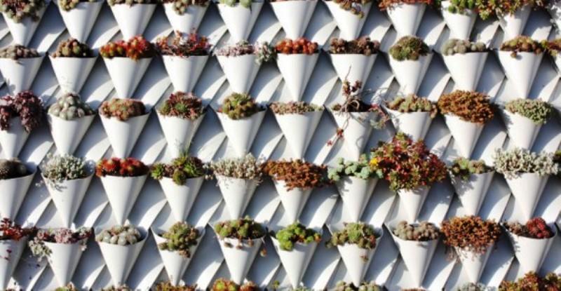 A engenhoca capaz de transformar um telhado comum em telhado verde (sem reformas)