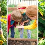 FARM TO SCHOOL leva orgânicos para dentro das escolas (no prato e no currículo)