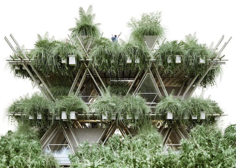 A cidade de bambu que promete abrigar até 20 mil pessoas