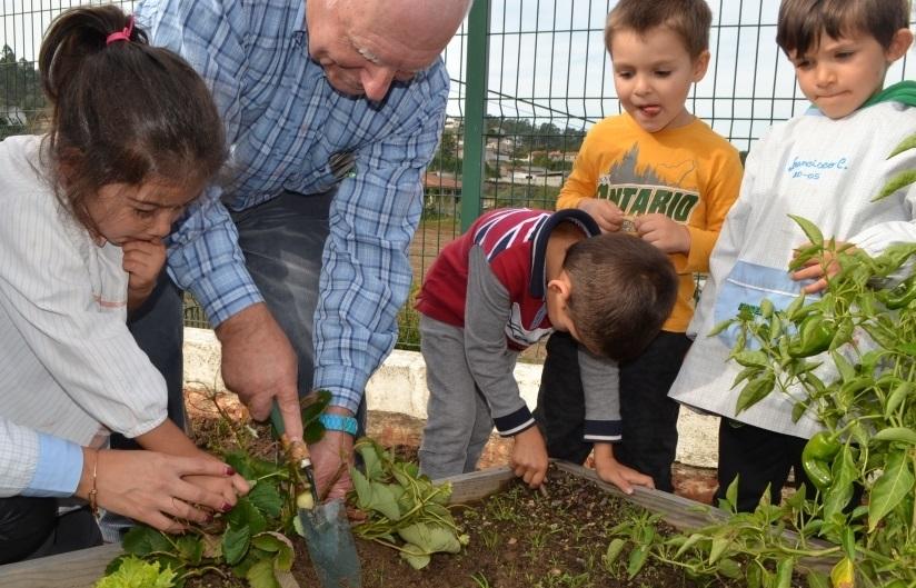 Projeto convida idosos e crianças a cultivar horta juntos para promover respeito intergeracional