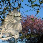 Escócia cobra por sacolas plásticas e já economiza 650 milhões de unidades por ano