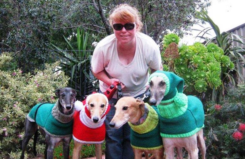 Conheça a mulher que se dedica a tricotar roupas de frio para cachorros abandonados