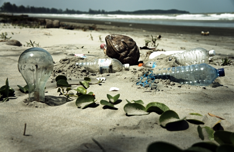 Oceanos vão ter mais plástico do que peixes em 2050, diz estudo