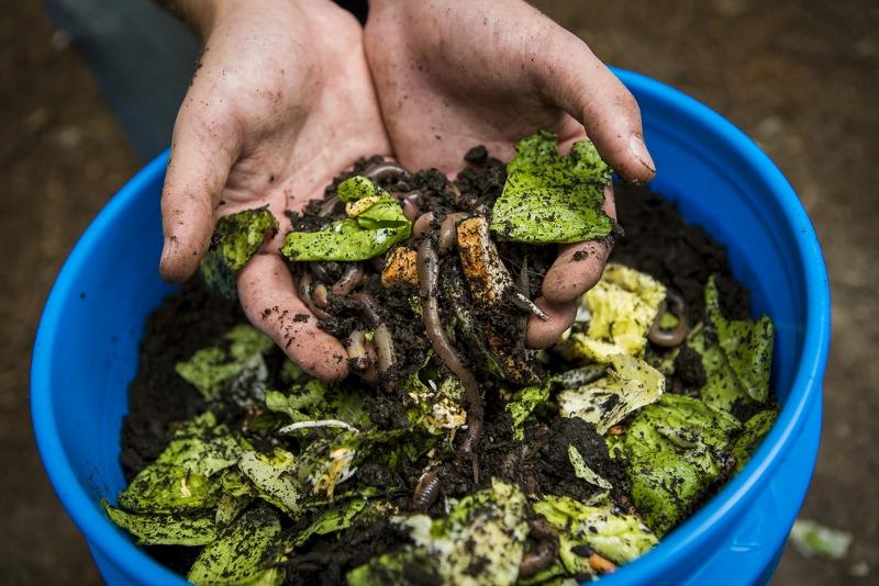 É possível! O que aprendi ao praticar compostagem por dois anos em um APARTAMENTO