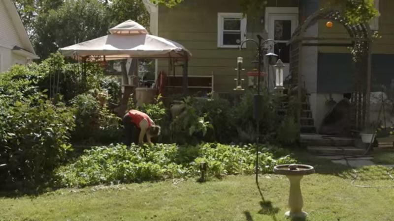 Reality conta história de jovens que desafiam os pais para cultivar hortas orgânicas em casa