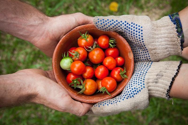 Compartilhe mais, compre menos! 9 iniciativas que promovem a troca de produtos e serviços