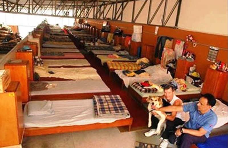 Conheça o ÚNICO abrigo de São Paulo que aceita moradores de rua com seus animais de estimação
