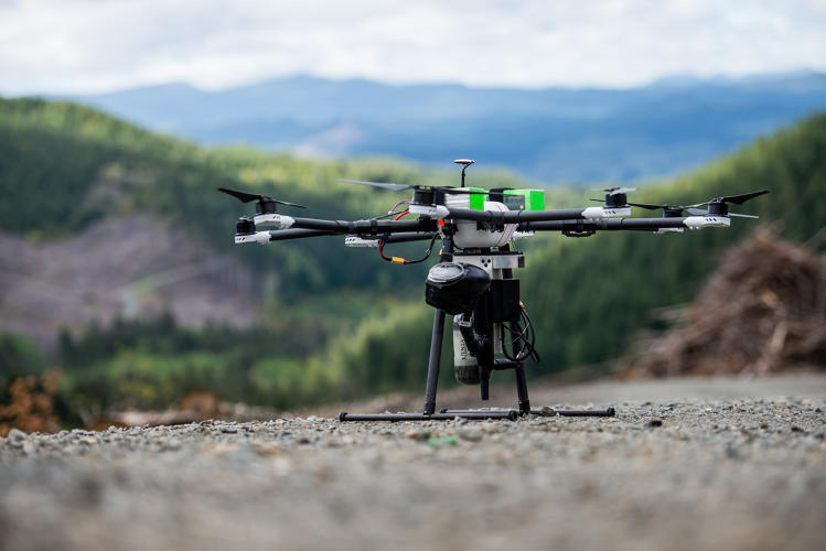 Drones sobrevoam e semeiam áreas desmatadas em distância ideal para que brotem novas árvores