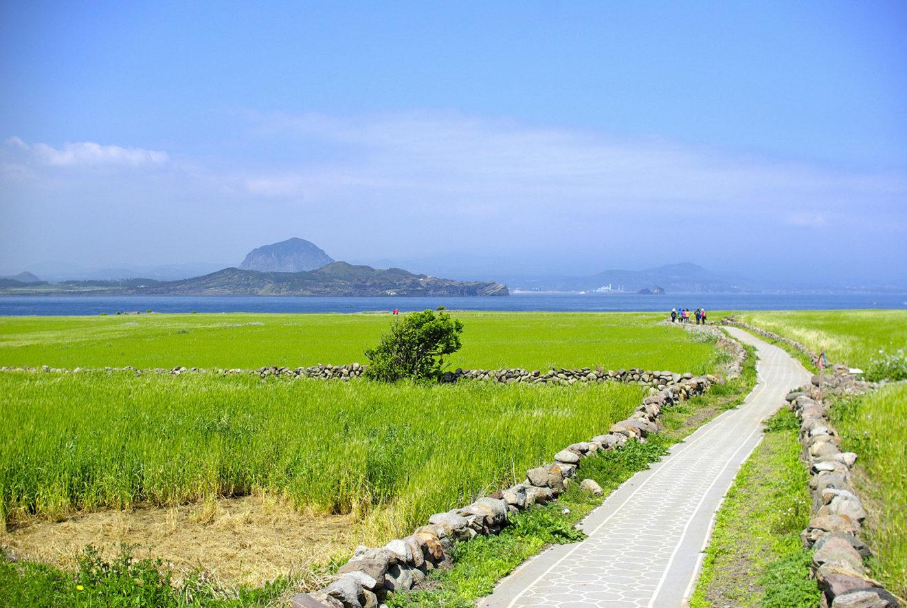 A ilha que funciona 100% à base de energia limpa e em breve se tornará carbono zero