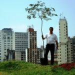 O brasileiro que viaja o mundo plantando árvores nativas – já foram 2 milhões de mudas em 21 países