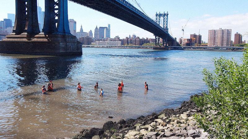 Escola dá aulas em rio para mostrar aos alunos (ao vivo!) situação da biodiversidade aquática