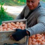 O povoado do Acre que tem sua economia baseada em trocas (e dá muito certo)