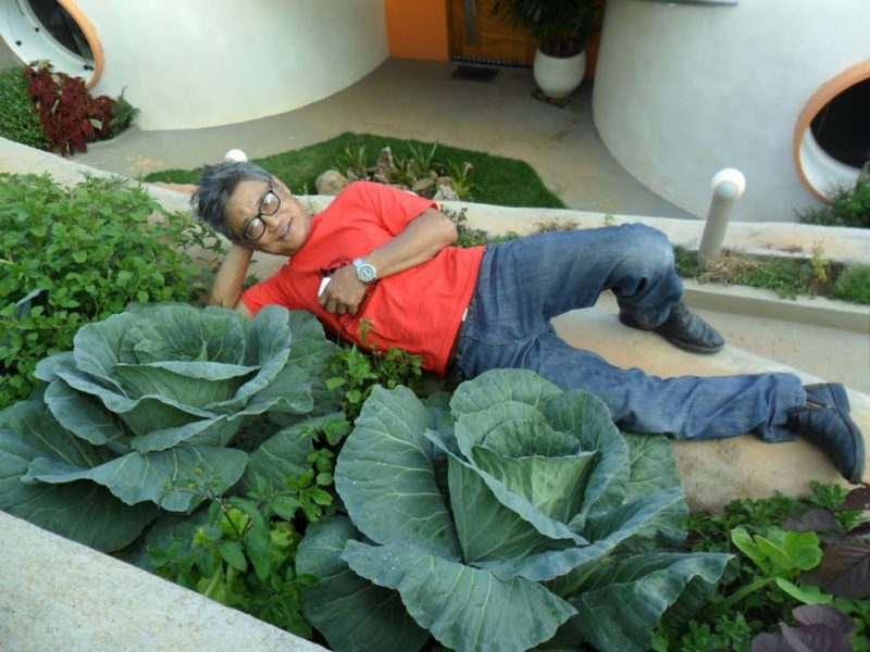 Quer aprender a manter uma horta orgânica em casa? Pioneiro do tema no Brasil dá curso em ecovila de SP