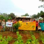 Coletivo implementa hortas comunitárias em bairros periféricos de SP (e saúde e qualidade de vida da população aumentam)